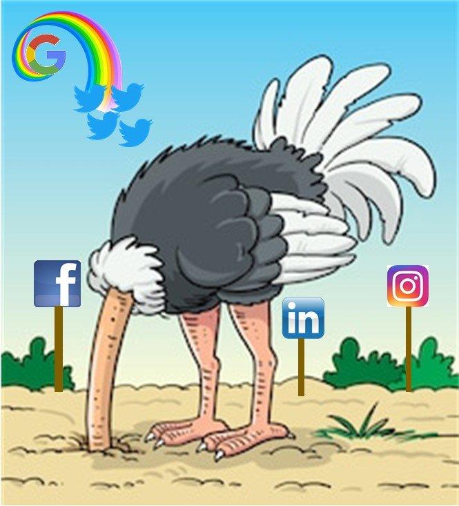 REAL Moxie social media mangement mistakes